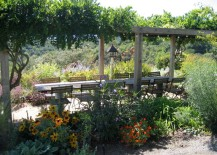 Long dining table surrounded by plants 217x155 Winery Style: Relaxed, Decadent Design at Home