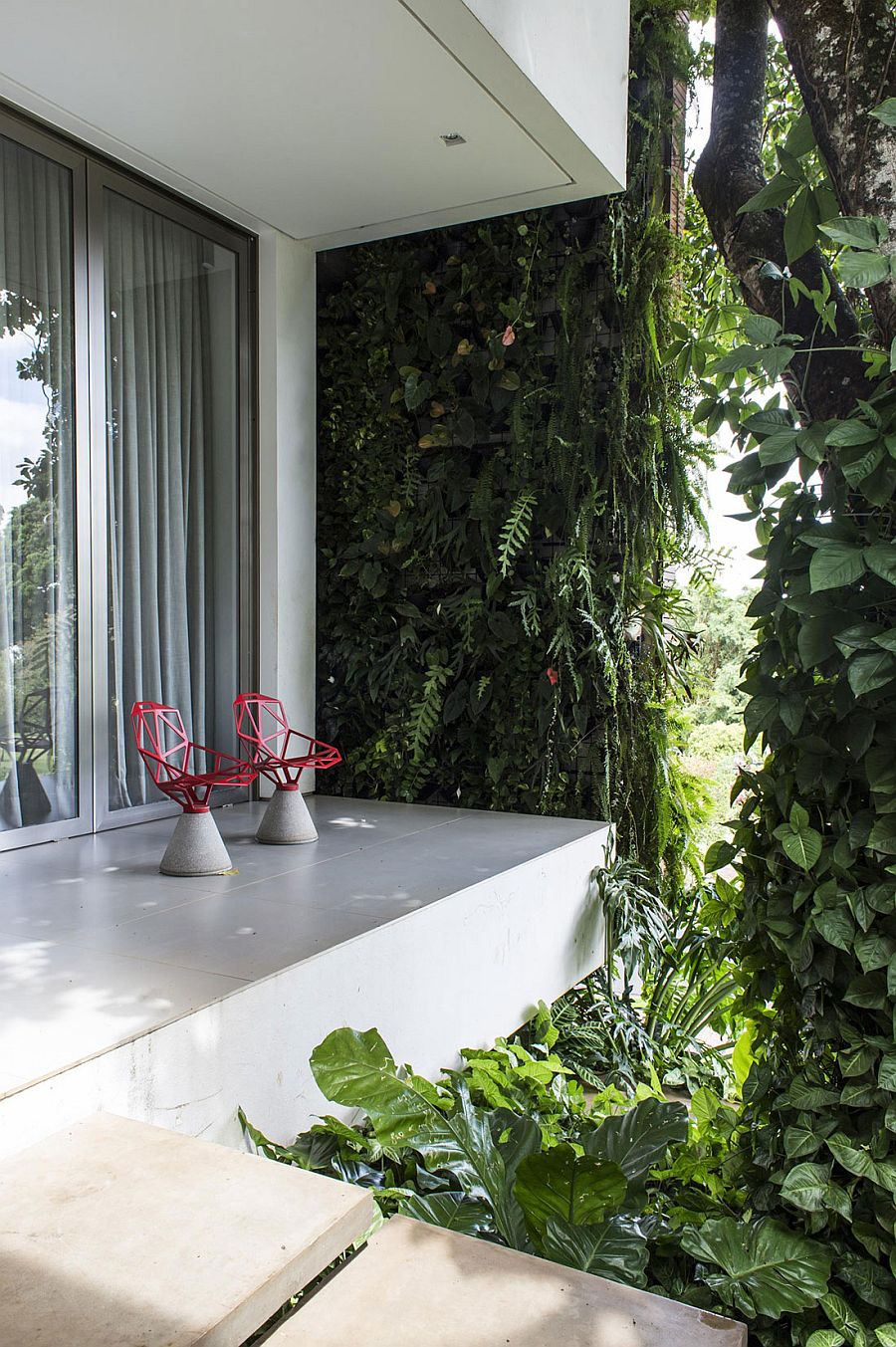 Natural greenery covers the contemporary home and extends indoors
