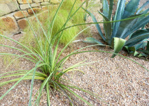 Pea gravel, yucca and blue agave