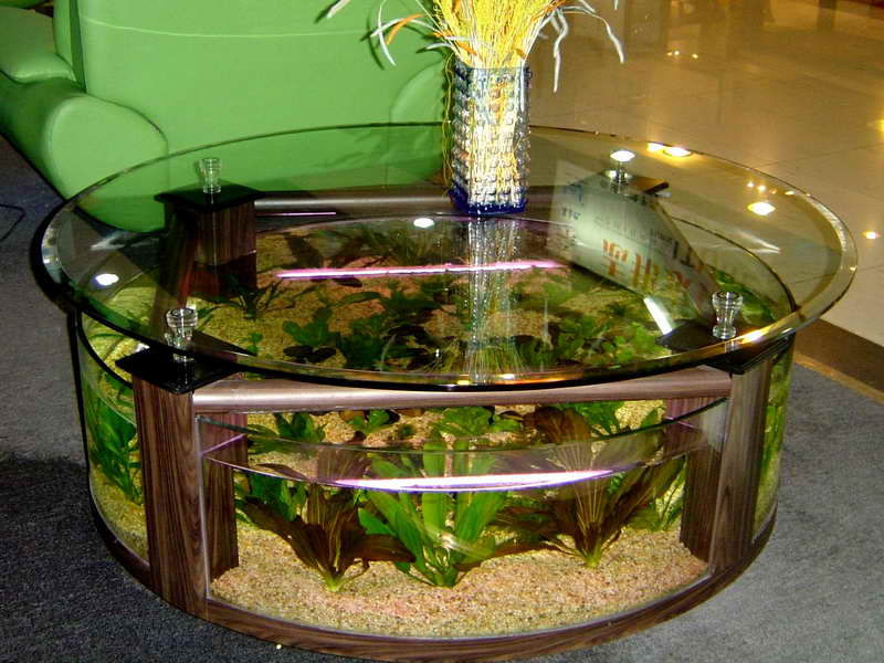 round glass coffee table with aquarium