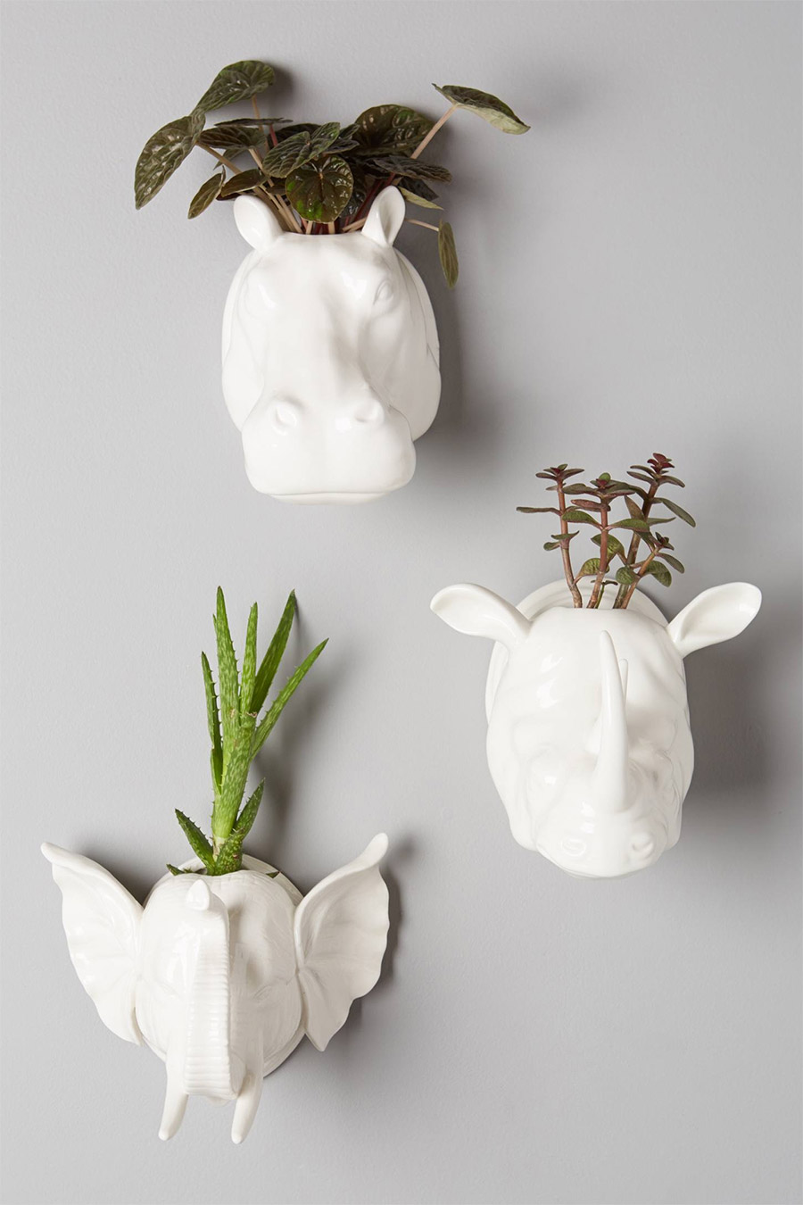 View in gallery Sahel Wall Planters