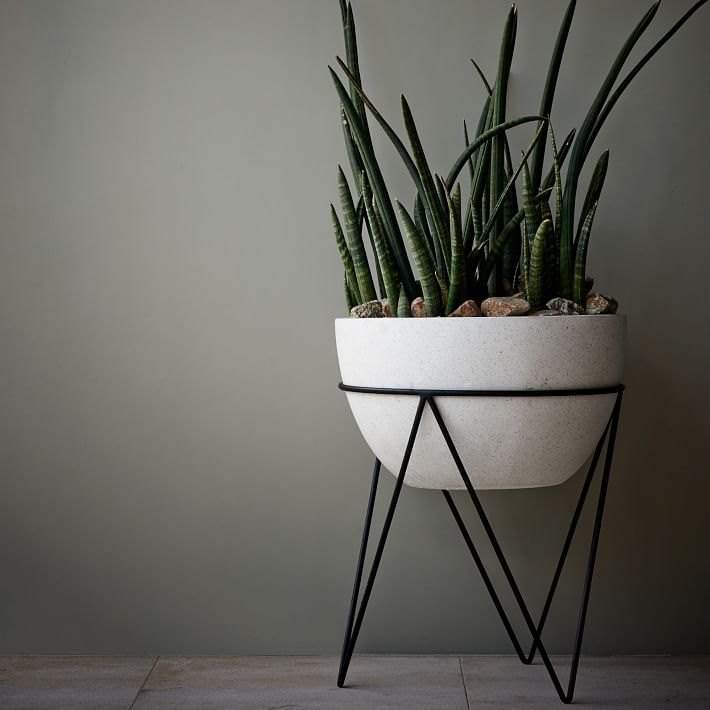 Sculptural planter from West Elm