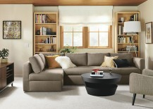 Sleeper sofa and storage chaise from Room & Board