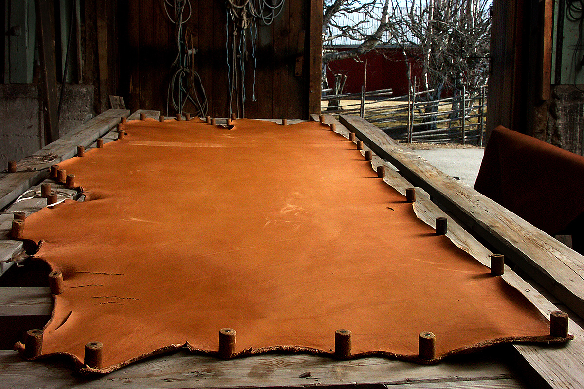Spruce bark tanned Swedish cattle hide