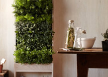 Williams Sonoma Freestanding Indoor Vertical Garden for Herbs