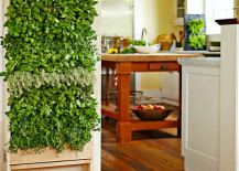 Williams Sonoma Freestanding indoor Indoor Vertical Garden for Kitchen