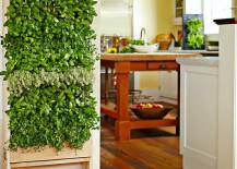 Williams Sonoma Freestanding Vertical Garden for Kitchen