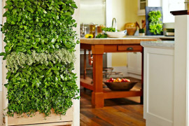 Williams Sonoma Freestanding Vertical Garden for Kitchen