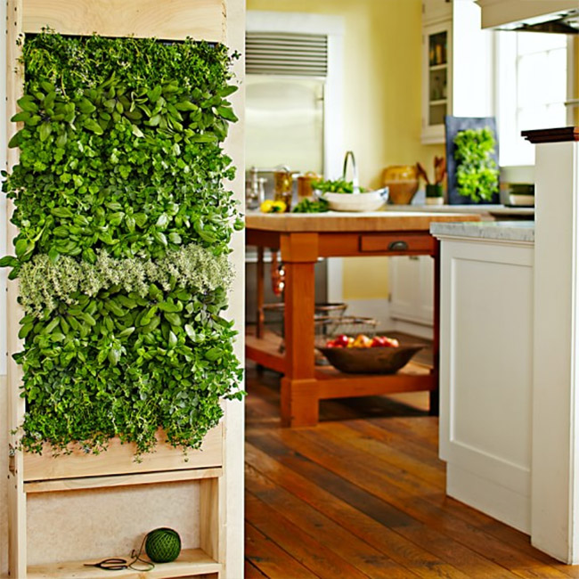 Vertical Indoor Garden 8 easy ways to create a vertical garden wall inside your home view in gallery williams sonoma freestanding vertical garden for kitchen workwithnaturefo