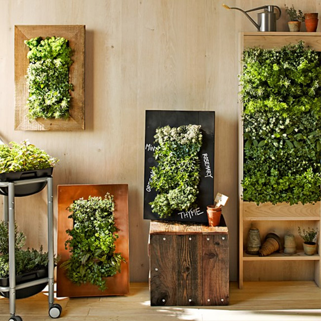 8 easy ways to create a vertical garden wall inside your home Indoor living wall herb garden