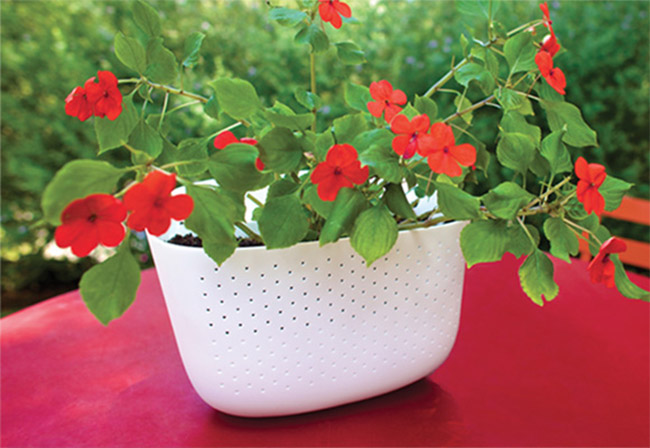 Woolly Pocket Wall Planter 2