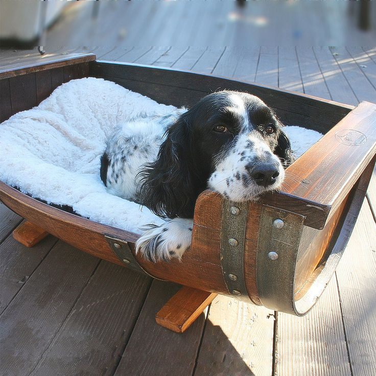 An adorable dog lounges in his wine barrel bed