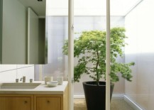 Bathroom with walkout to a bright courtyard 217x155 16 Minimal Courtyards with Just a Hint of Nature
