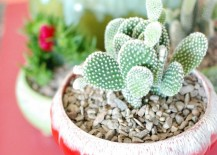 Colorful-vintage-containers-hold-succulents-in-the-home-of-Kimi-Encarnacion-217x155