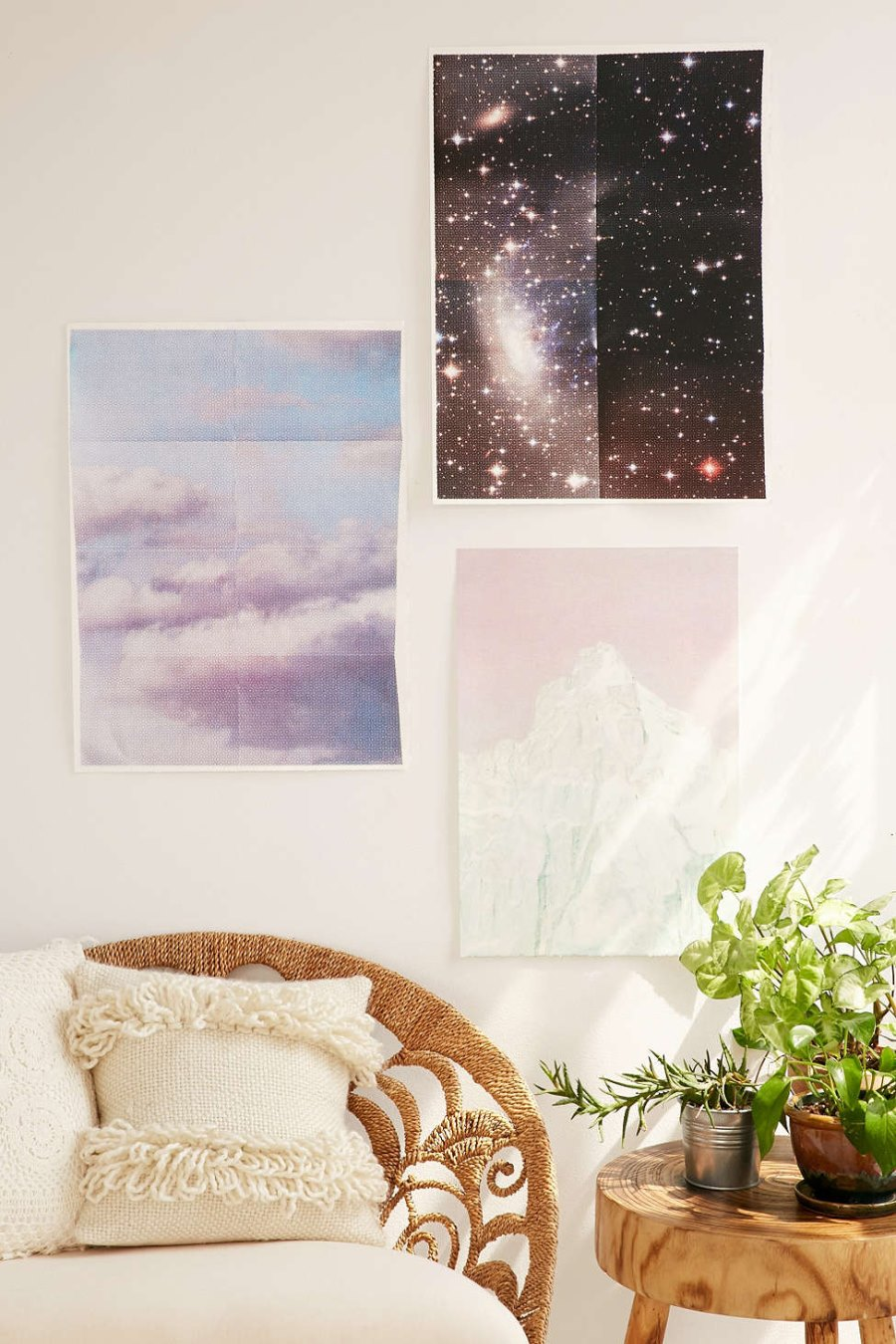 Cosmos art print from Urban Outfitters