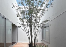 Courtyard with rock garden and surrounding deck 217x155 16 Minimal Courtyards with Just a Hint of Nature
