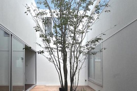 Courtyard with rock garden and surrounding deck  16 Minimal Courtyards with Just a Hint of Nature Courtyard with rock garden and surrounding deck