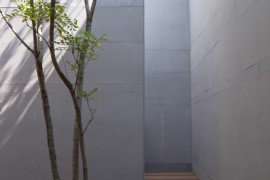 Courtyard with tall walls and a tree growing through the deck  16 Minimal Courtyards with Just a Hint of Nature Courtyard with tall walls and a tree growing through the deck