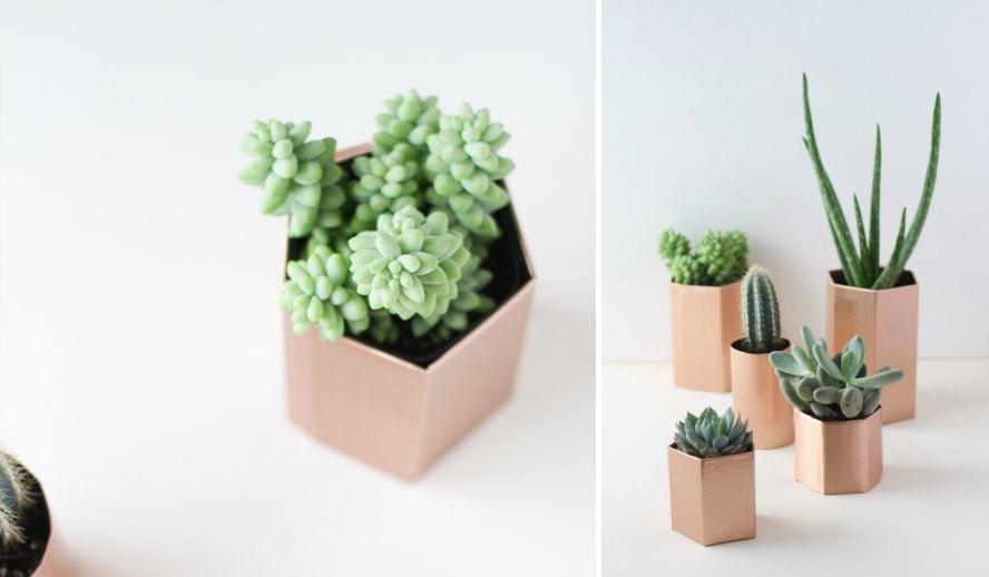 DIY hexagon planters from Curbly