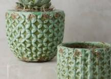 Garden pots from Anthropologie