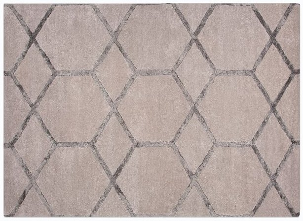 Hexagon-patterned rug from West Elm