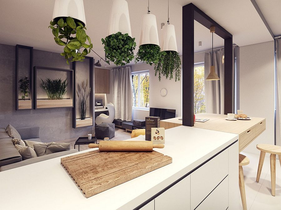 Ingenious way to add greenery to the kitchen and living room