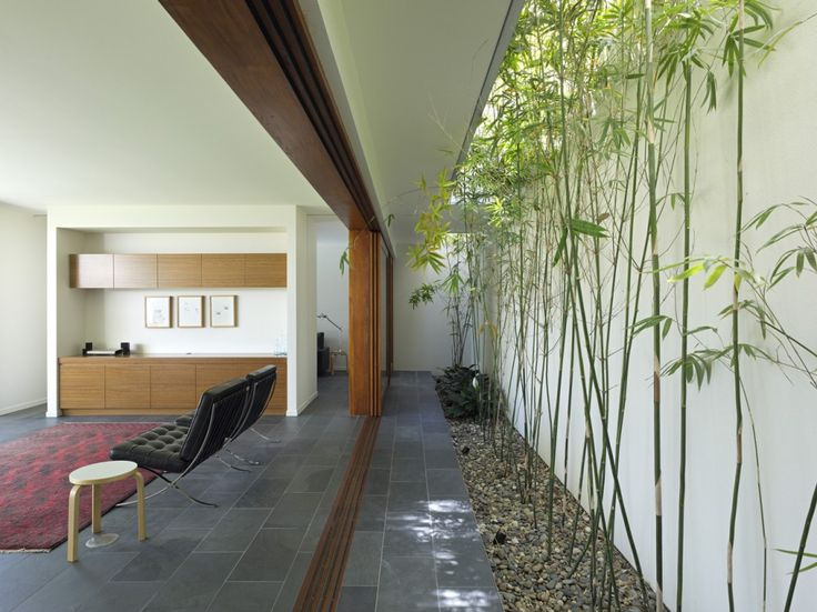 Long and linear courtyard with bamboo