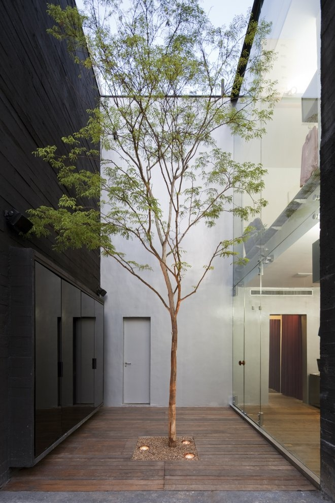 Narrow courtyard with a single tall tree