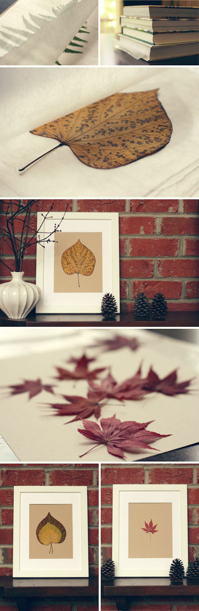 Pressed leaves in simple but gorgeous fall-themed frames