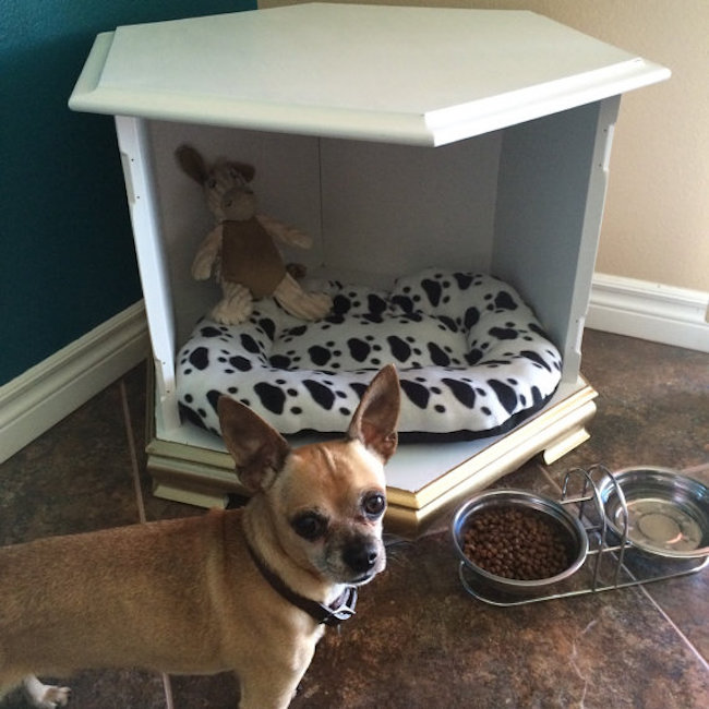 Simple dog bed that could be used as a table too
