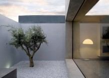 Small and serene courtyard with a touch of greenery  217x155 16 Minimal Courtyards with Just a Hint of Nature