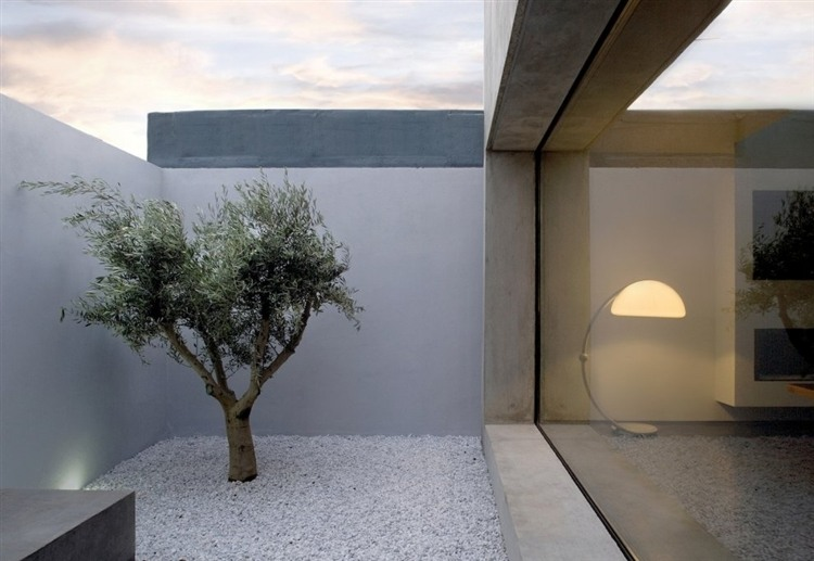 Small and serene courtyard with a touch of greenery