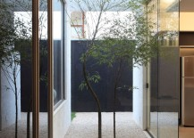 Small courtyard OM House by Studio Guilherme Torres