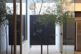 Small courtyard OM House by Studio Guilherme Torres  16 Minimal Courtyards with Just a Hint of Nature Small courtyard OM House by Studio Guilherme Torres