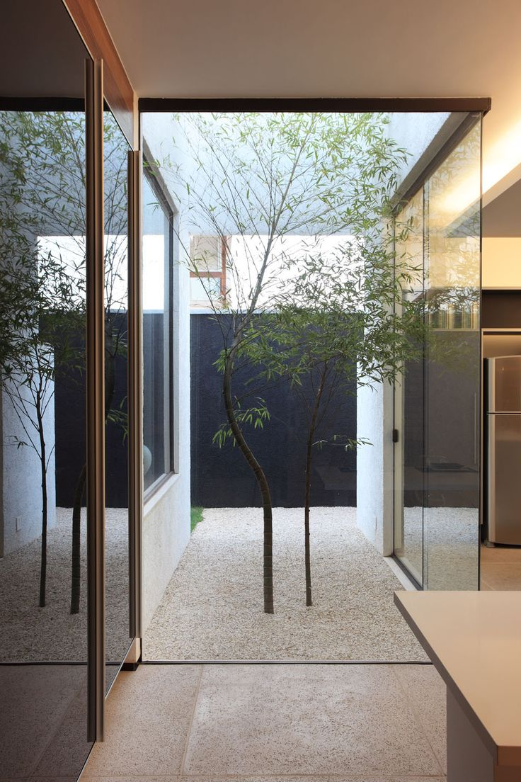 Small courtyard dividing a kitchen from other rooms