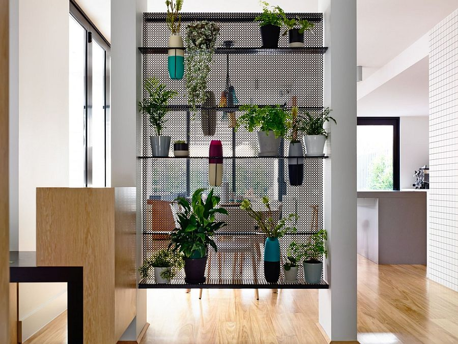 Smart and modern way to create a green wall indoors with potted plants