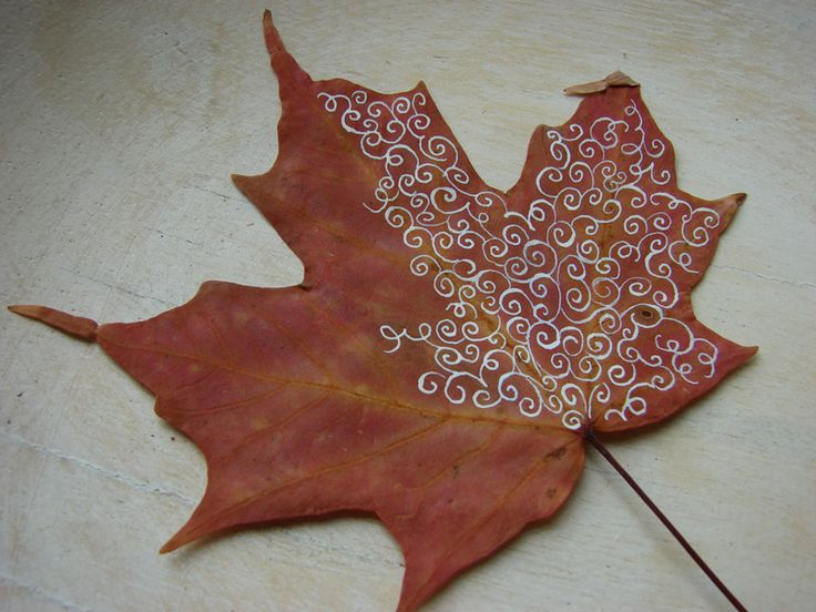 8 Creative Diy Project Ideas For Using Fall Leaves As Seasonal Wall Art