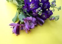 A-bouquet-of-purple-flowers-217x155