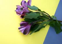 Purple-alstroemeria-make-a-regal-statement-217x155