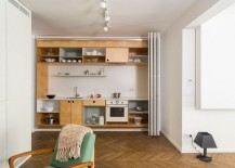 Sleek-and-stylish-small-kitchen-design-217x155