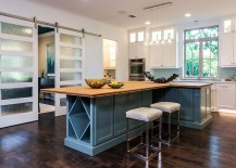 Trendy-barn-style-doors-with-frosted-glass-panels-217x155