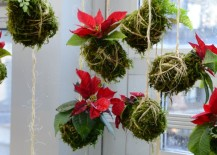 Assorted ferns, peperomia, and poinsettia make unique Christmas ornaments