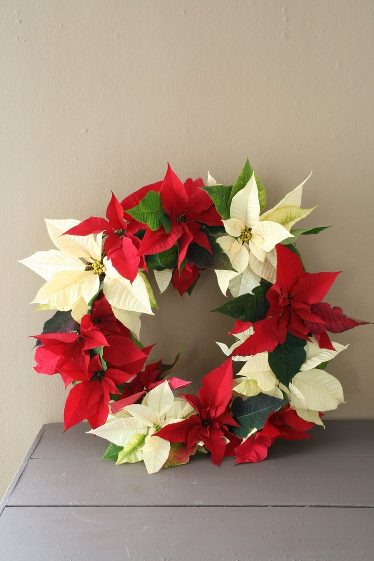 Beautiful wreath made out of red and white poinsettias