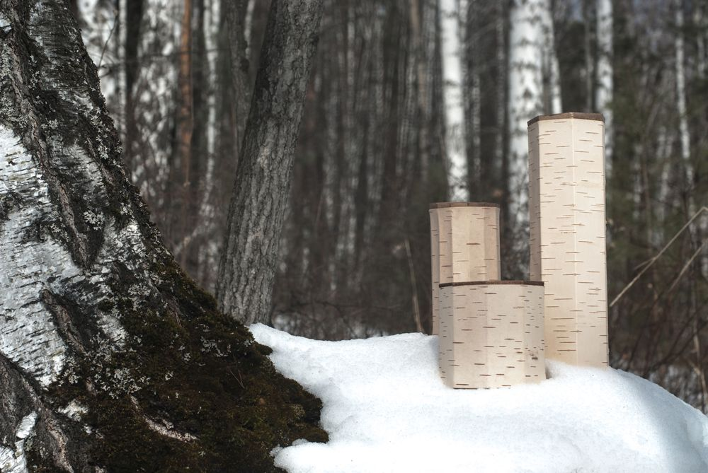 Birch bark containers by Anastasiya Koshcheeva