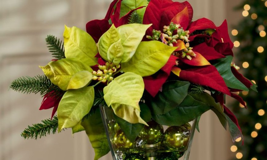 17 Lovely Ways to Display Poinsettias for the Holidays