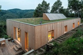 Gorgeous green roof of the home improves its insulation