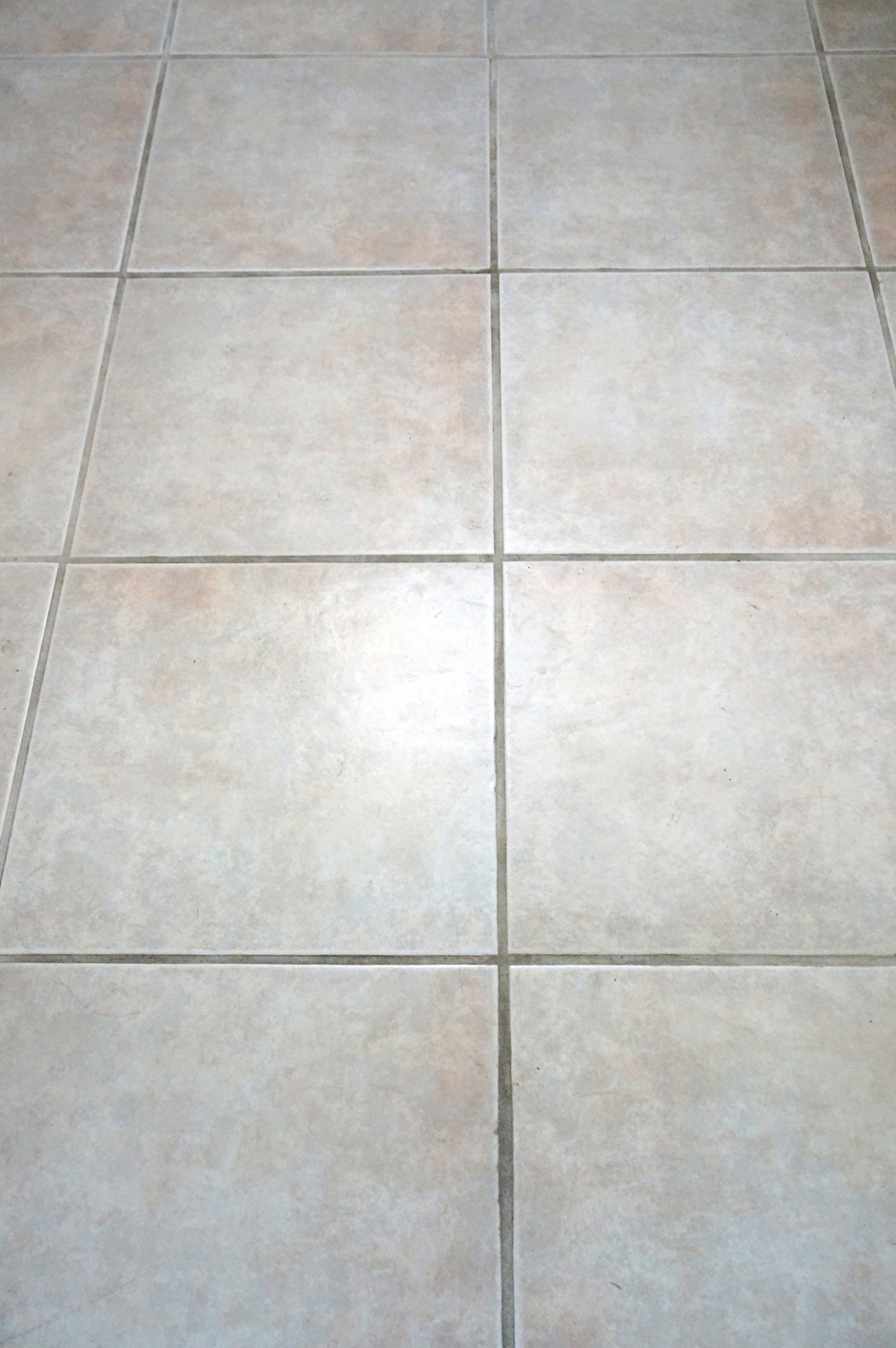 Grout floor before shot