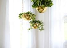 Hanging-plants-in-a-crisp-guest-room-217x155