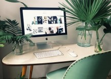 Large-plants-take-up-most-of-the-room-on-this-office-desk-217x155