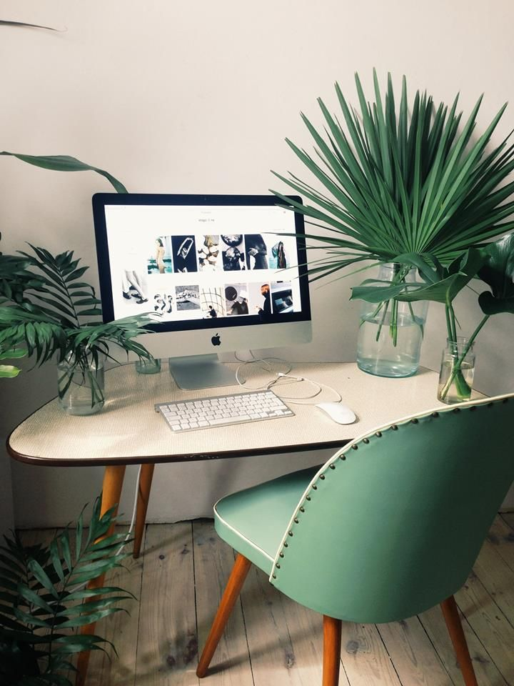 Large plants take up most of the room on this office desk